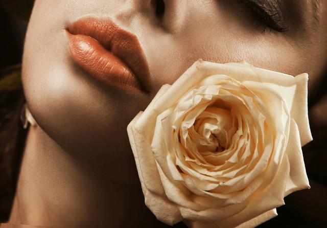 白玫瑰代表什么意思 居然有这么多含义